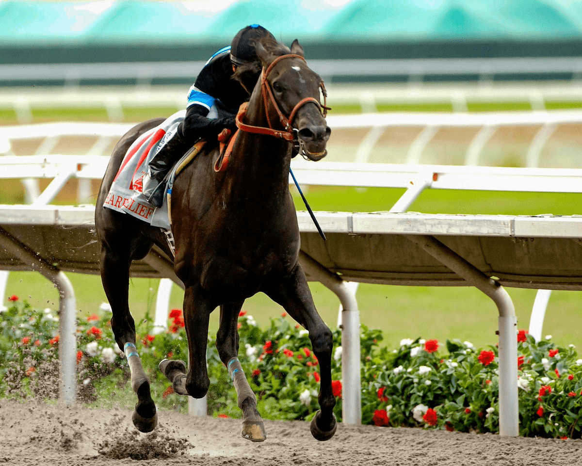 Shared Belief under rider Mike Smith