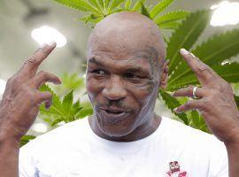 Mike Tyson, former heavyweight champion, has become a marijuana entrepreneur. (Image: Chris Roussakis/Getty)