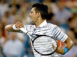 Novak Djokovic is favored at the 2019 US Open, but could face to go through both Roger Federer in the semifinals and Novak Djokovic in the final. (Image: Matthew Stockman/Getty)