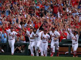 St. Louis Cardinals celebrate their 11th division crown since the inception of the NL Central. (Image: AP)