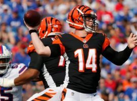 Andy Dalton and the Cincinnati Bengals will try and be one of the NFL winless teams that gets a victory this Sunday. (Image: AP)