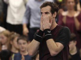 Andy Murray defeated Stan Wawrinka in the final of the European Open to win his first singles title in over two years. (Image: AP)