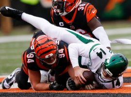 NY Jets QB Sam Darnold is sacked for a safety by Cincinnati Bengals safety Shawn Williams. (Image: Gary Landers/AP)