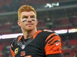 Cincinnati quarterback Andy Dalton is playing again after being benched and could be a key to the Bengals-Browns game on Sunday in Cleveland. (Image: Getty)
