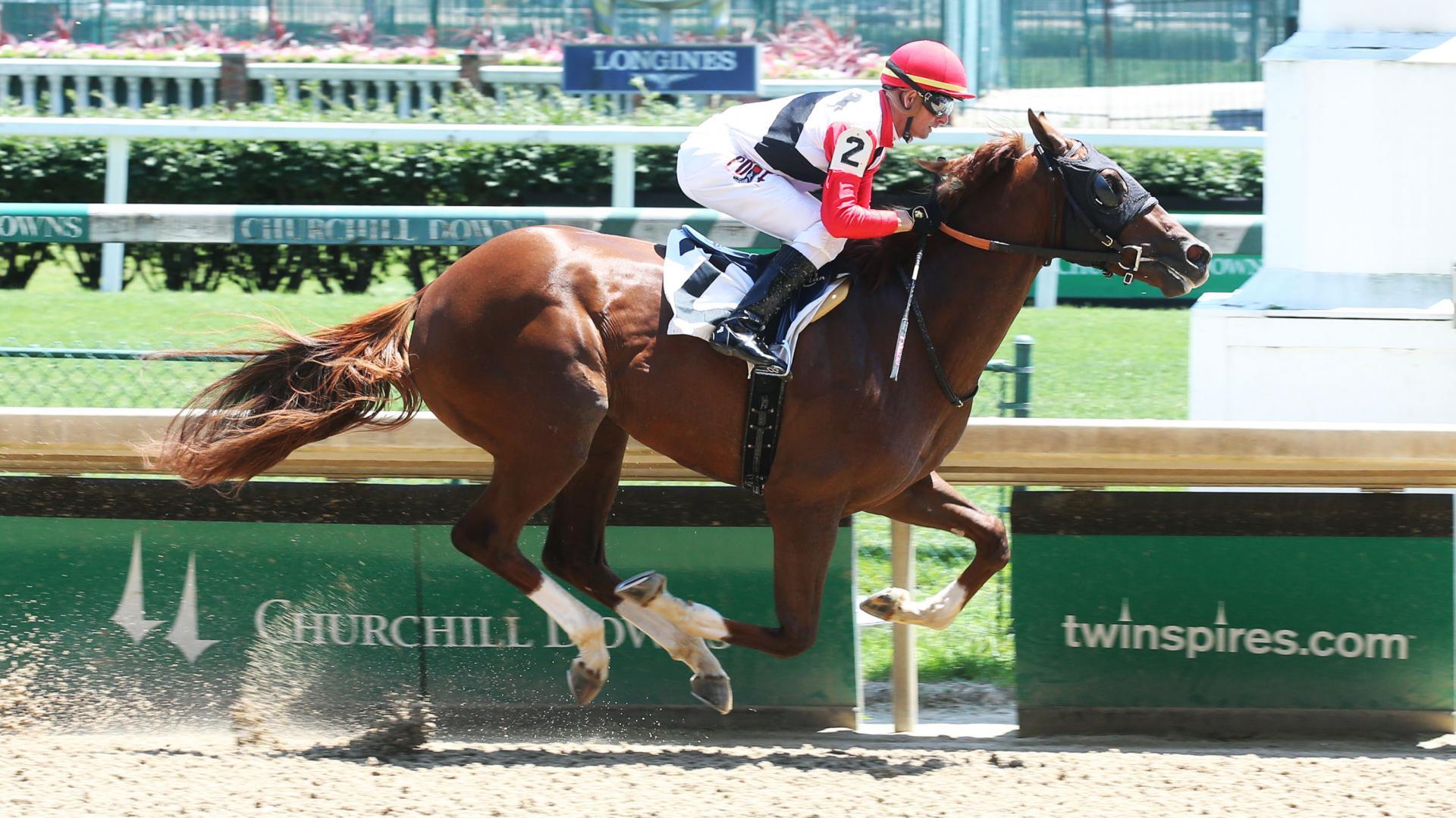 Scabbard race horse
