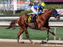 By winning his first race in spectacular fashion, Charlatan drew comparisons to former Bob Baffert trainee Justify. Can he justify those comparisons? (Image: Ernie Belmonte)