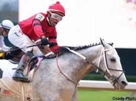 Silver Prospector, ridden by Ricardo Santana, Jr., won the Southwest Stakes and is the horse to watch this weekend. (Image: Coady Photography)