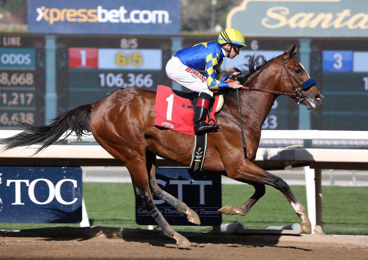 Authentic Winning Sham Stakes
