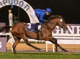 $12 Million Dubai World Cup Becomes Latest COVID-19 Casualty
