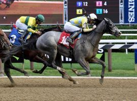 Enforceable is the 7/2 favorite in a packed Louisiana Derby field. But can he beat the traffic with his closer style? (Image: Coglianese Photos)