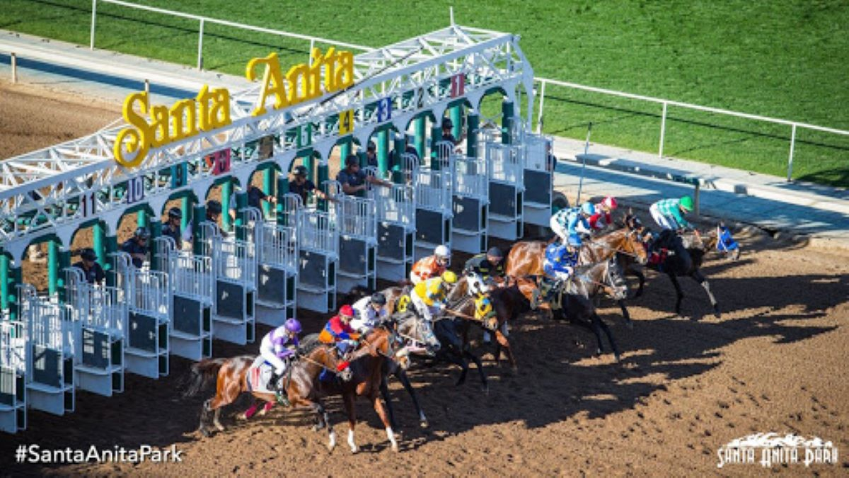 Horses exit Santa Anita starting gate