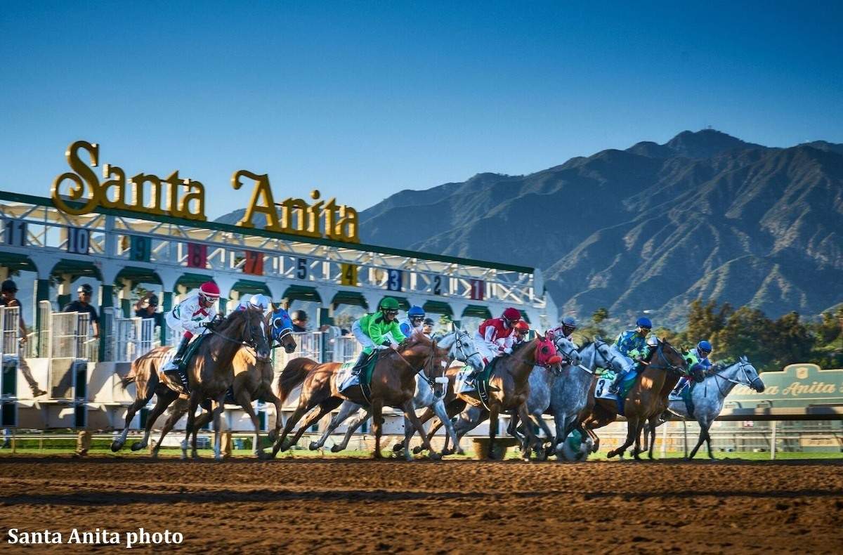 Santa Anita Park Starting Gate
