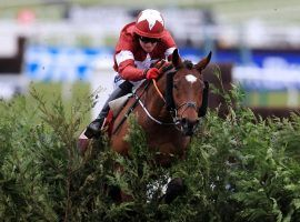 Tiger Roll will enter the Grand National as the clear favorite to win an unprecedented third straight race at Aintree. (Image: The Scottish Sun)