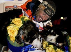 Thomas Waerner, of Norway, celebrates winning the 2020 Iditarod with his lead dogs, Bark and K2, at the finish line in Nome, Alaska. (Image: Marc Lester/AP)