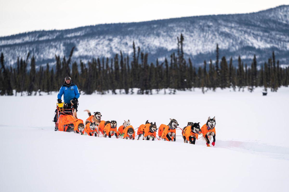 2020 Iditarod Thomas Waerner Jessie Royer