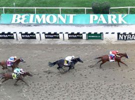 After postponing racing due to the coronavirus, Belmont Park does not have a date for either its spring/summer meet or the Belmont Stakes. (Image: Getty Images)