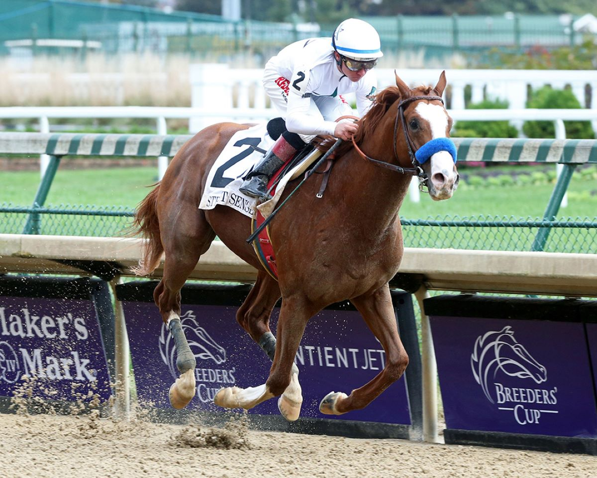 Improbable at BC Dirt Mile