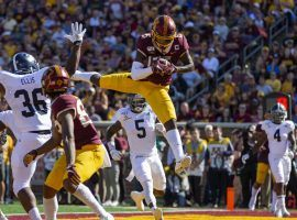 Minnesota Gophers WR Tyler Johnson hauls in a touchdown catch against Georgia Southern. (Image: Jesse Johnson/USA Today Sports)