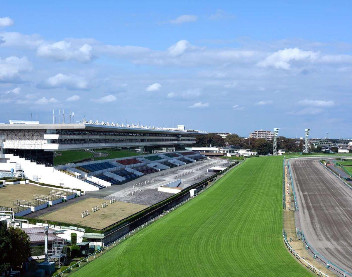 Nakayama Racecourse-Satsuki Sho