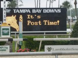 Tampa Bay Downs welcomes 12 new post times after the state granted the track an extension to May 27. (Image: Tampa Bay Downs)