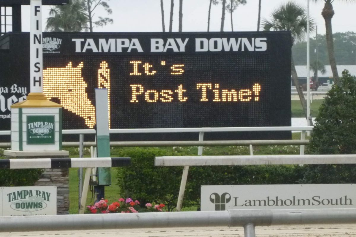 Tampa Bay Downs-Extension