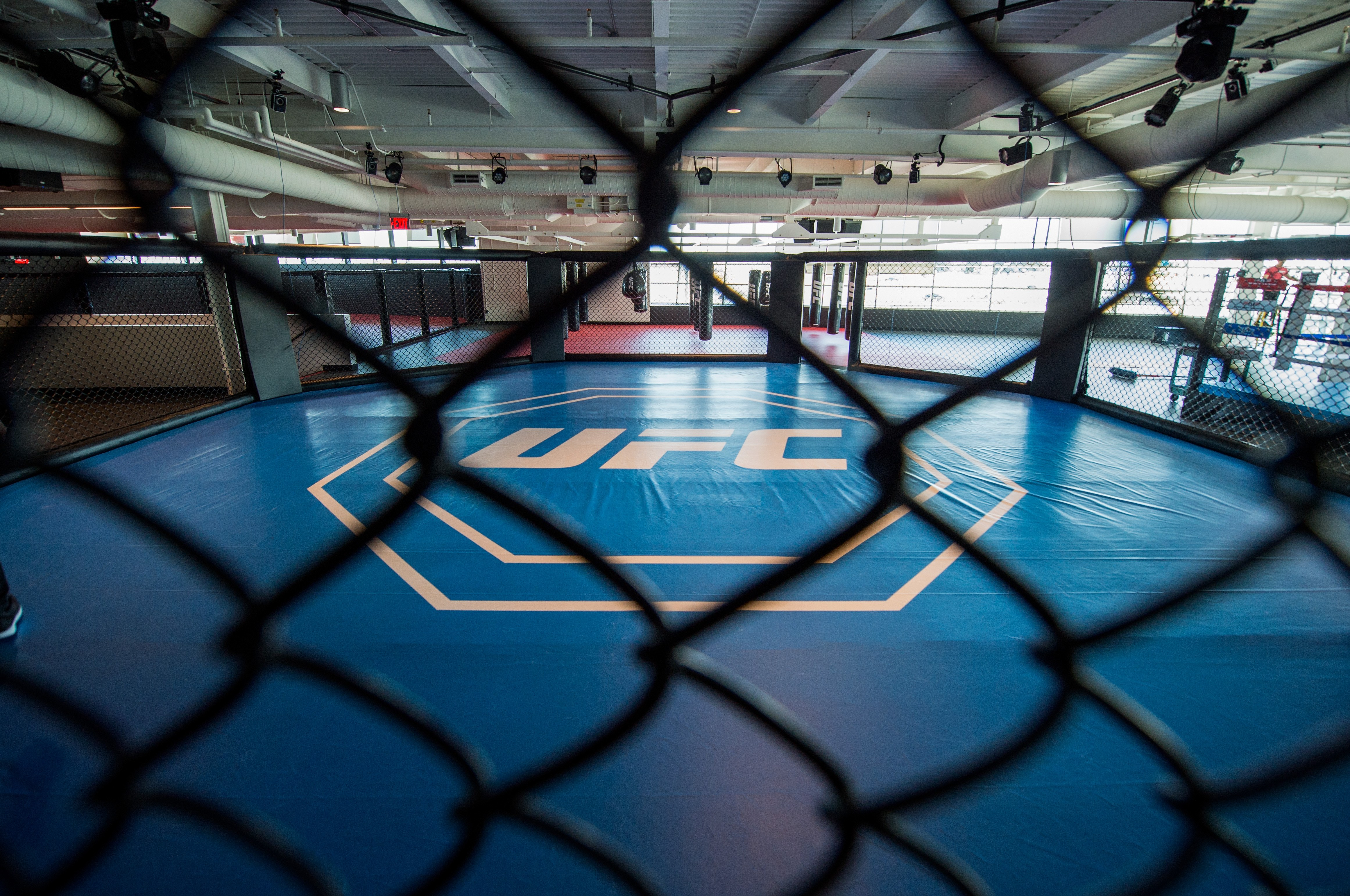 UFC May 9 Dana White