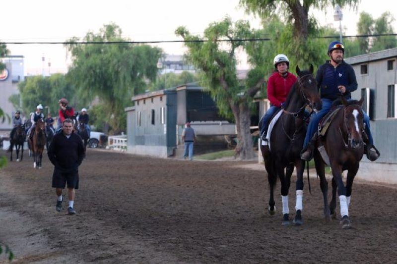 Santa Anita Backstretch 2