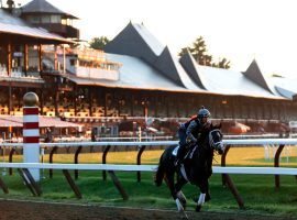 Dating to 1863 and defining the sport of kings in the United States, probably no race track in the country holds the history, charm and heritage of Saratoga in upstate New York. (Image: AP)