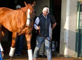 Justify and Hall of Fame trainer Bob Baffert were cleared in a 2019 drug scandal. But Baffert finds himself entangled in another with two horses testing positive in Arkansas. (Image: AP Photo/Garry Jones)