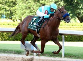 Charlatan has a fruitful future in the breeding shed after he finishes beating his fellow thoroughbreds like he did here in the Arkansas Derby. (Image: Coady Photography)