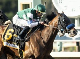 Combatant pulled off a mild upset in winning March's Santa Anita Handicap. The 5-year-old is a 4/1 favorite to win the Oaklawn Handicap. (Image: Benoit Photo for AP)