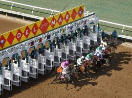 Del Mar's summer meet will sprint out of the gate eight days early. The iconic California track will race nine weeks this summer instead of eight. (Image: KC Alfred/San Diego Union-Tribune)