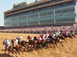 The sight of fans in the stands will greet horses at Texas' Lone Star Park. The track can reopen after Friday with 25% capacity. (Image: Lone Star Park)