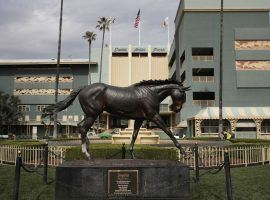 Santa Anita Park's revamped spring stakes schedule could use a Zenyatta-like performance to help the beleaguered track. (Image: Jae C. Hong/AP)