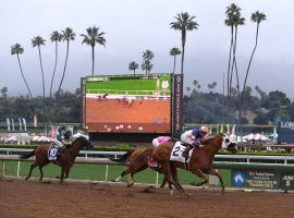 Santa Anita Park officials want a return to finishes like this in the 2019 Monrovia Stakes. The track's proposed Friday reopening is in limbo pending approval from the health department. (Image: Mark Ralston/AFP-Getty)