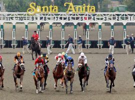 Horses breaking from the Santa Anita starting gate won't be seen live by fans. But the iconic Southern California racetrack reopens for business Friday. (Image: Southern California News Group)