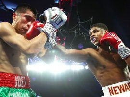Shakur Stevenson (right) punches Joet Gonzalez (left) in a WBO world featherweight title fight on Nov. 26, 2019. (Image: Mikey Williams/Top Rank)