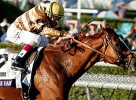 Wise Dan won 23 races and finished second twice in 31 starts. (Image: SI.com)