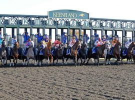Keeneland will open its starting gate this summer for a limited, but loaded, July meet. (Image: Anne M. Eberhardt/The Horse