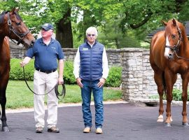 Triple Crown winners American Pharoah (left) and Justify, who flank their trainer, Bob Baffert. This is the company awaiting Tiz the Law when he starts his stud career at Ashford Stud in Kentucky. (Image: Coolmore America)