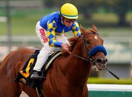Charlatan easily captures his division of the Grade 1 Arkansas Derby. But it's been an uphill climb for the Bob Baffert colt since. He'll miss the Belmont and the Kentucky Derby with an ankle injury. (Image: AP Photo)