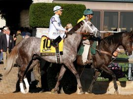 At one time, Gouverneur Morris was a top-10 Kentucky Derby prospect. A bout of colitis made him the Derby Trail's latest casualty. (Image: Eclipse Sportswire)