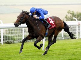 Pinatubo put on a vintage performance in last year's VIntage Stakes, winning by five lengths. He is the prohibitive favorite to win the first English Classic of the season -- the 2,000 Guineas. (Image: Godolphin Racing)