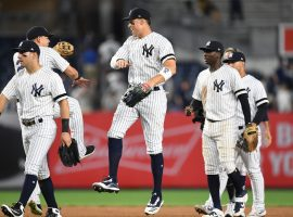 The New York Yankees will enter the abbreviated 2020 Major League Baseball season as one of the favorites to win the World Series. (Image: Sarah Stier/Getty)