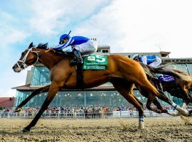 The 2019 Louisiana Derby was one of By My Standards five wins in 10 career races. He shoots for No. 6 in Saturday's Whitney Stakes at Saratoga. (Image: Scott Serio/Eclipse Sportswire