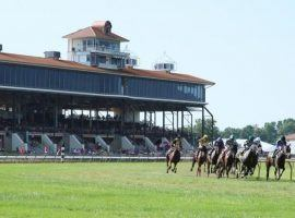 Beginning Thursday, a limited number of fans will see the sight of horses making the turn at Ellis Park. The Kentucky track announced seven backstretch workers tested positive for the coronavirus. (Image: Coady Photography)