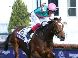 Enable and Frankie Dettori face only three rivals in their bid for history in Saturday's King George VI and Queen Elizabeth Stakes at Ascot. (Image: Coady Photography)