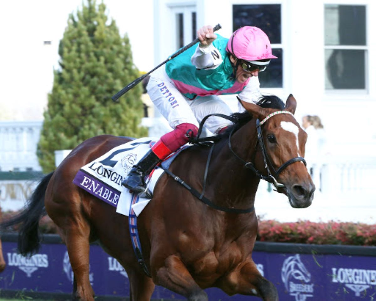 King george and queen elizabeth stakes 2021 betting calculator qarabag vs monaco betting expert boxing