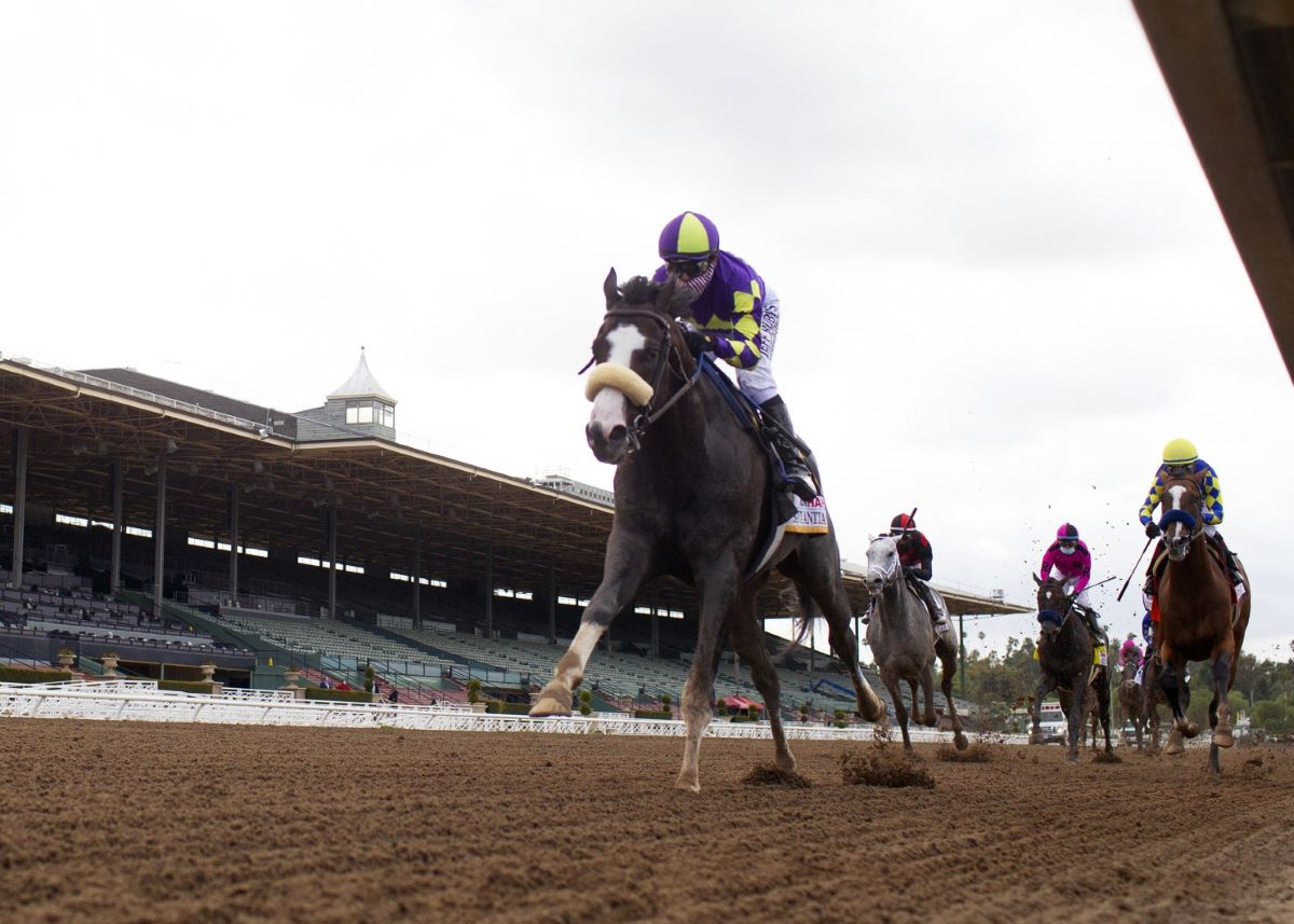 Honor A.P.-Shared Belief