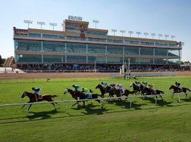 Lone Star Park returns to the racing scene after a two-week hiatus due to the coronavirus. (Image: NTRA)